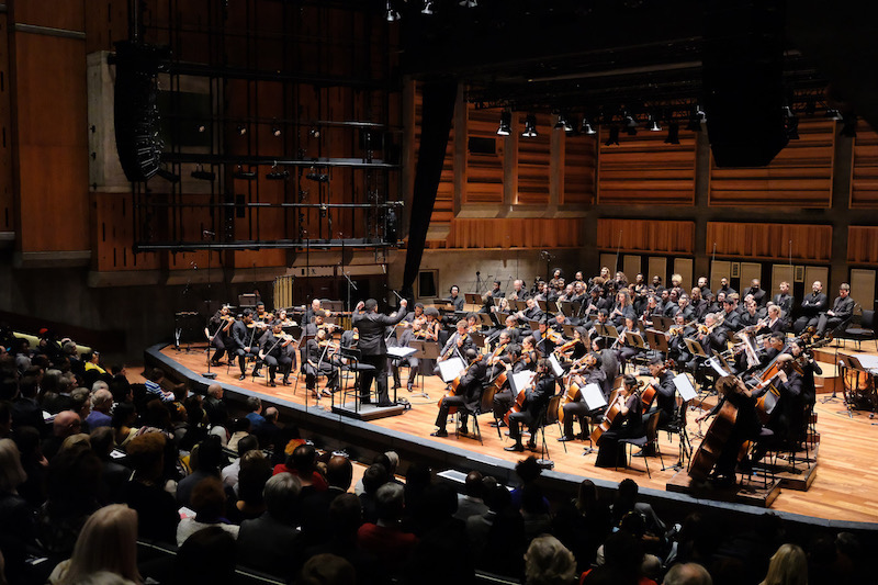 Queen Elizabeth Hall, Chineke! Orchestra (c) Mark Allan